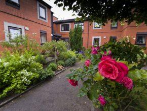 a communal housing garden