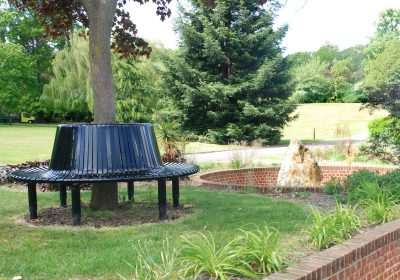 A bench in Sydenham Wells Gardens